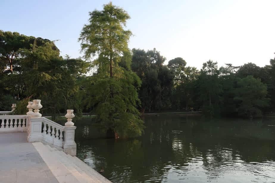 Dans le parc du Retiro