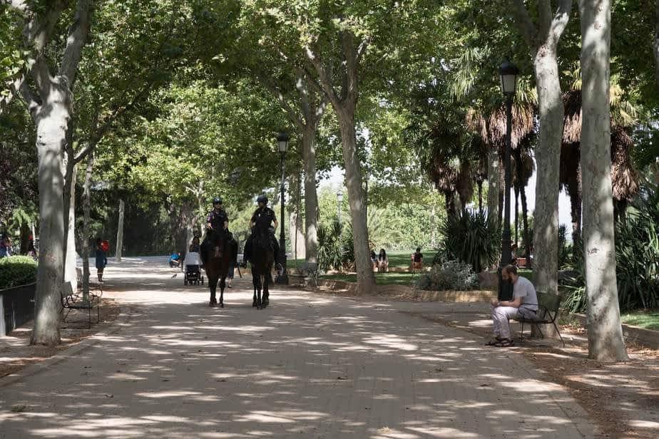 Le parc du temple de Debod